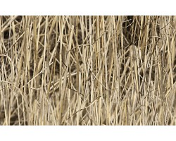 Camouflage film Camoclad 3M Dry grass